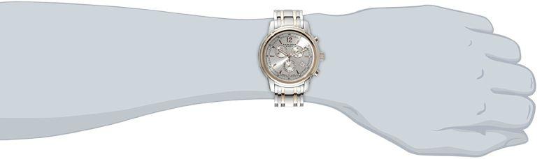 アクリボス Akribos XXIV 男性用 腕時計 メンズ ウォッチ クロノグラフ シルバー AK692TTR  【並行輸入品】