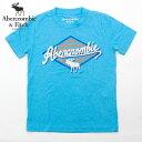アバクロンビー&フィッチ Tシャツ キッズ ボーイズ 子供服 Abercrombie&Fitch クルーネック 【送料無料♪】