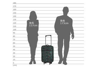 サイズ比較表。男性モデルと女性モデルの間に並べました。ご参考に。
