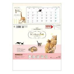 Calendar ねこの気ままな3ヶ月 壁掛け カレンダー 2022 年 上から順タイプ トーダン 動物 写真 実用 書き込み 令和4年暦 マシュマロポップ