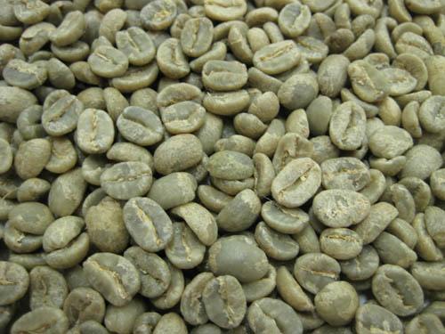 コーヒー, コーヒー豆  AA 1kg