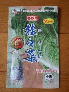 芯まで柔らかく、糖度も高い食べ切りサイズ娃々菜(春秋用)