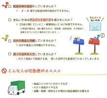 【ランキング1位獲得】【日本助産師会推奨商品】しゃんとボディインナー(LLサイズ)《モーブラ(モーハウスブラ)シリーズノースリーブ授乳インナー》【メール便対応】