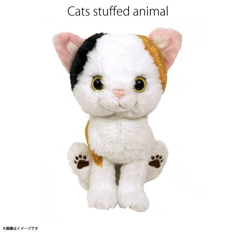 ぬいぐるみ・人形, ぬいぐるみ  Kitten P7571