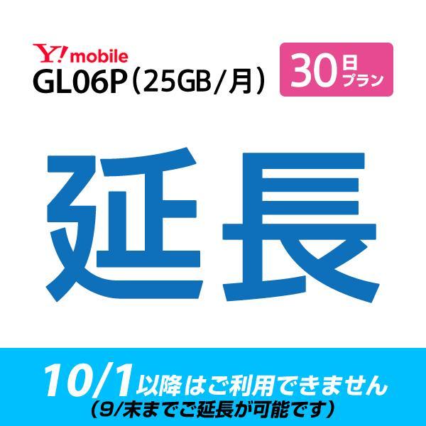 (9月末までご延長可能) GL06P_30日延長専用 wifiレンタル 延長申込 専用ページ 国内wifi 30日プラン