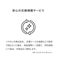 AVIOTアビオット日本のオーディオメーカーTE-D01bBluetoothイヤホン完全ワイヤレスイヤホン自動ペアリング高音質防水長時間再生ノイズキャンセリングiphoneandroidbluetooth5.0