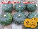 自然農法・自然栽培西洋かぼちゃ10kg