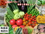 自然農法プラチナ・自然栽培野菜セット(夏季)Lサイズ(ボリュームの3〜4kg!!)