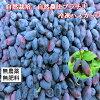 自然栽培・自然農法冷凍ハスカップ