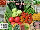 自然農法プラチナ・自然栽培野菜セット(夏季)Mサイズ