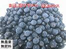 自然栽培・自然農法プラチナ冷凍カシス(1kg)