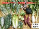 自然農法プラチナ・自然栽培野菜セット(秋季)Mサイズ