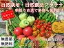 自然農法プラチナ・自然栽培野菜セット(夏季)