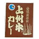 1000円ポッキリ 国産 無添加 上州牛カレー 170g カ
