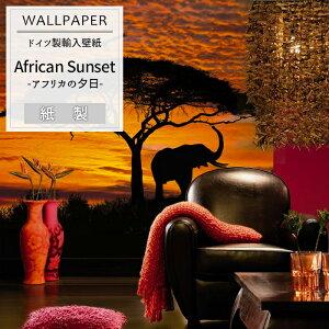 壁紙 クロス/ ドイツ製のおしゃれなデザインの輸入壁紙♪ のりなし インポート壁紙[店内全品ポ...