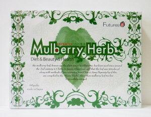 [あす楽対応]株式会社Future'sEXTRACTくわの葉茶 4g×60包【桑の葉茶、Mul…