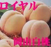 晴れの国おかやま「岡山白桃」(光センサー選別「ロイヤル」糖度12度以上) ...