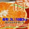 「甘平」愛媛オリジナル品種3L(10個)3kg「青秀」糖度が高く、平らな形をしていることから、「甘平(かんぺい)」と名付けられました。