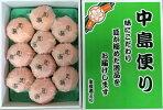 「紅まどんな」「匠と極」L約3kg(12〜15個入り)【糖度13度以上】最上級品中島便りJA全農えひめのオリジナル品種