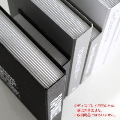 ダミーブック(ページ部分)