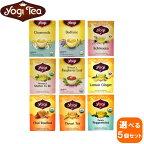 【選べる5個セット】yogiヨギティー16TB×5