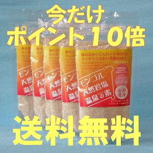 送料無料!さらにポイント10倍も!【5パック】1パックあたり850円!バスソルト 天然岩塩温泉の...
