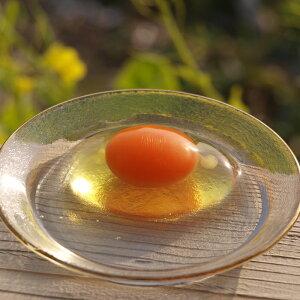 ニワトリノニワ の絶品有精卵 2パック 20個 (10個入り x 2パック)【生卵かけご飯】が…
