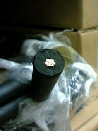 電気工事士技能試験向け練習用材料高圧絶縁電線 KIP 8sq