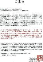 【空間除菌ブロッカーCL−40】