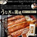 うなぎの蒲焼真空パック(5枚セット) ※冷凍 [うなぎ 国産...