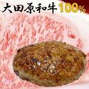【A5ランク和牛】送料無料 大田原和牛 100%ハンバーグ(