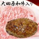 送料無料 大田原和牛入りハンバーグ(約150g×5個)  