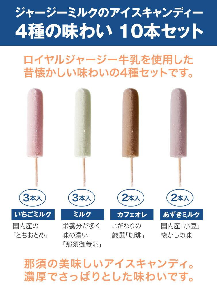 那須興業『アイスキャンディー詰め合わせ』