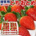 いちご 苺 ホール詰め 600g x 2箱 (計1.2kg)...