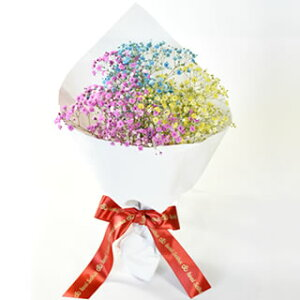 【送料無料!】≪七色に輝く≫プレゼントに最適!いわい生花の「ロマンチックかすみ草」7色そろう7本セット【フラワー 花束 入学 卒業祝い 結婚祝い プチギフト ホワイトデー 歓迎会 父の日 歓送迎会 内祝い】