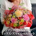 【送料無料】【クーポン利用で30%OFF】ロマンチックかすみ...