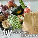 【送料無料】元気あっぷむら 元気モリモリ農産物BOX|野菜セット やさい 国産 栃木県産【TSM】