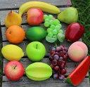 食品サンプル 果物 15種類セット (Cセット)