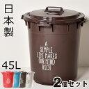 日本製 丸型カラーペール 45L 2個セット ゴミ箱 ごみ箱 ダストボックス ふた付き おしゃれゴミ箱 分別ゴミ箱 屋外ゴミ箱 45リットルゴミ箱 キッチンゴミ箱 インテリア雑貨 北欧 かわいいゴミ箱 デザインゴミ箱 生ごみゴミ箱 オムツゴミ箱 収納ゴミ箱 大容量ゴミ箱 平和工業