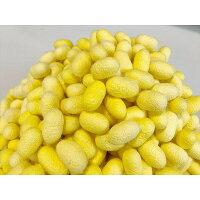 繭玉ぐんま黄金100個セット天然色国産富岡製糸場40%OFF繭オーガニック乾繭ハンドメイド