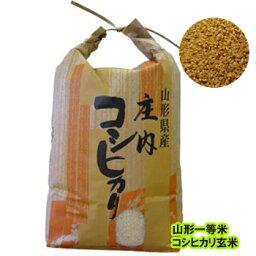 令和1年度 一等米 山形産 コシヒカリ玄米10kg;