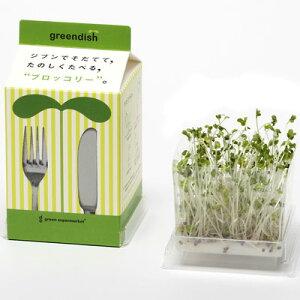 green supermarketGreendishグリーンスーパーマーケットグリーンディッシュブロッコリー