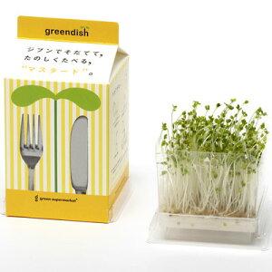 green supermarketGreendishグリーンスーパーマーケットグリーンディッシュマスタード
