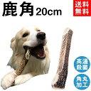 犬 おもちゃ オーガニック ボーン SSサイズ オーガニックコットン 綿100% dog toy bone イヌ 骨 ベット玩具 骨型 いぬ おもちゃ ぬいぐるみ ほね