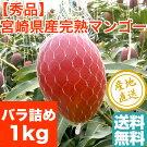 【特秀】完熟アップルマンゴー[贈答用2玉(1,020g以上)]送料無料宮崎県産【予約販売】御中元ギフト