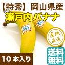 瀬戸内バナナ 岡山県産 特秀 無農薬国産バナナ 10本入り箱 送料無料 ギフト 予約販売