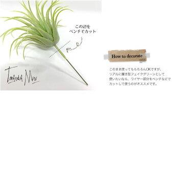 【ティランジアミニ】【みどりの雑貨屋】観葉植物フェイクグリーンインテリア雑貨おしゃれエアープランツ模様替えイミテーション壁掛けギフトプレゼント売れ筋