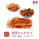 【送料無料】キムチセット (白菜 胡瓜 らっきょう)【キムチ