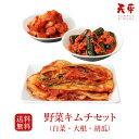 【送料無料】野菜キムチセット (白菜 大根 胡瓜)【キムチ
