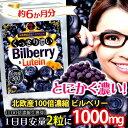 【送料無料】大容量約6か月分 くっきり濃いビルベリー&ルテイン(栄養機...
